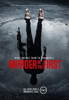 谜案追凶第二季