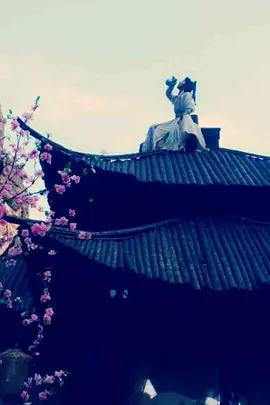 麻辣白玉堂之血黄金[上]