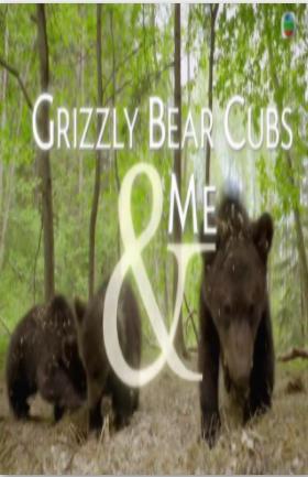 亲亲小灰熊