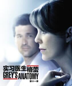 实习医生格蕾第十一季