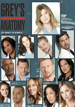 实习医生格蕾第八季