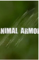 动物自卫术粤语版